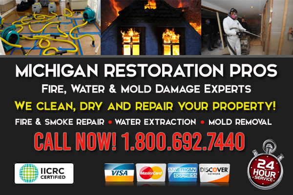 michigan restoration services