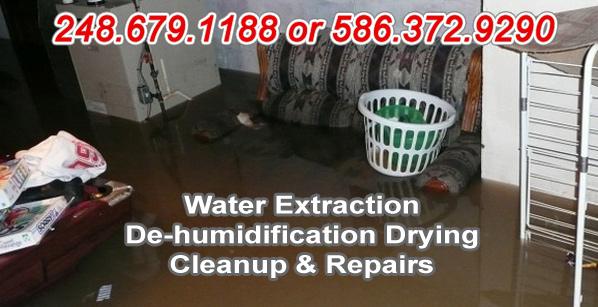restoration services in Michigan
