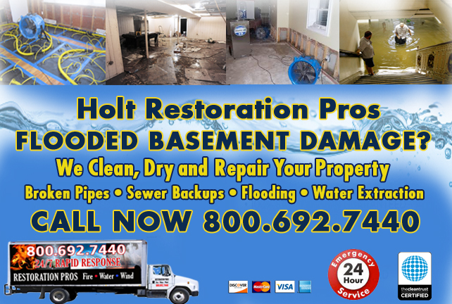 Holt Flooded Basement Cleanup