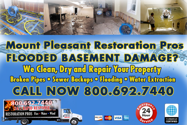 Mount Pleasant Flooded Basement Cleanup