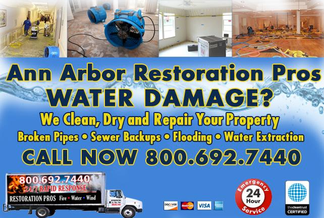 Ann Arbor water repair