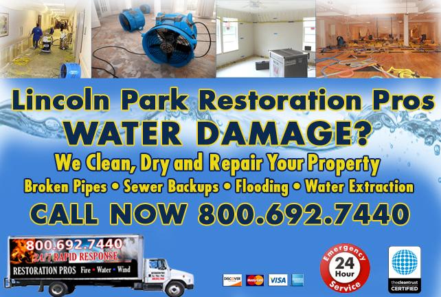 Lincoln Park water repair