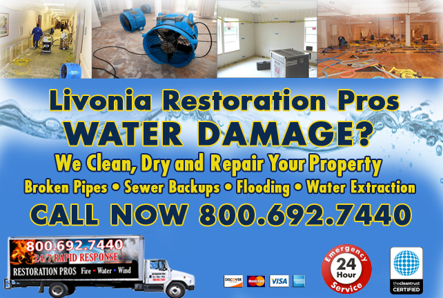 Livonia water repair