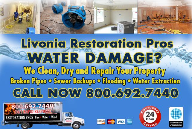 Livonia water repair