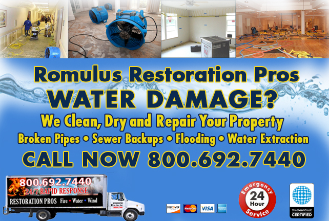 Romulus water repair