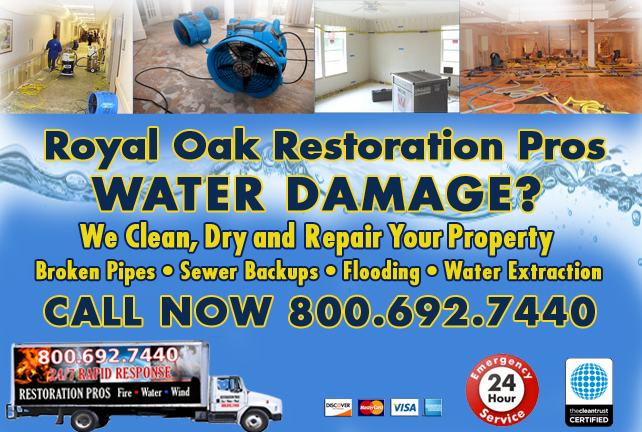 Royal Oak water repair