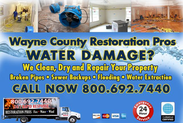 Wayne County water repair